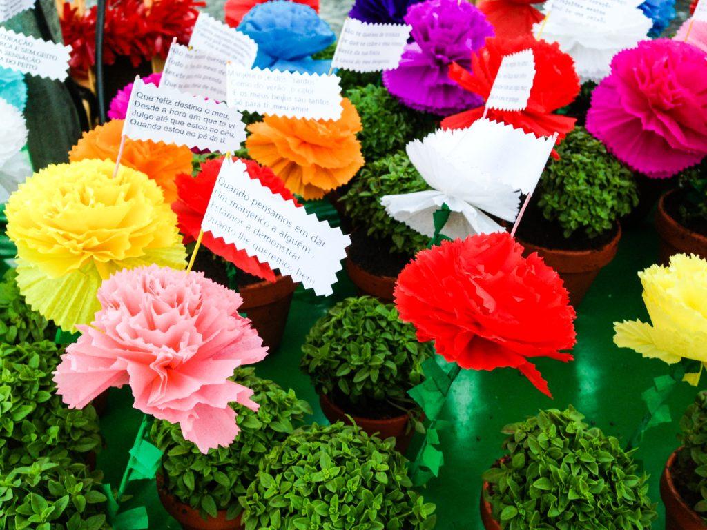 Lisbon Sardine Festival: Basil in flower pots
